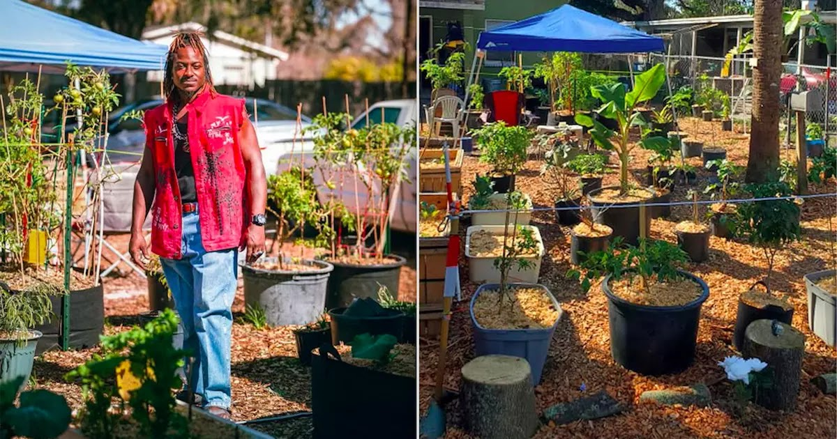 Man In Florida Uses His Stimulus Check To Create A Vegetable Garden And Is Now Almost Self-Sufficient
