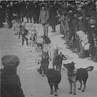 Cachorro informativo:Huskies na Alaska Sweepstakes