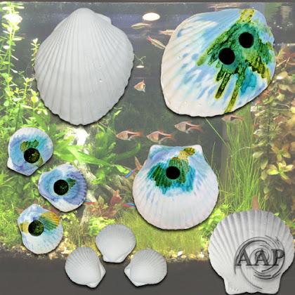 AAP Weco Wonder Shell