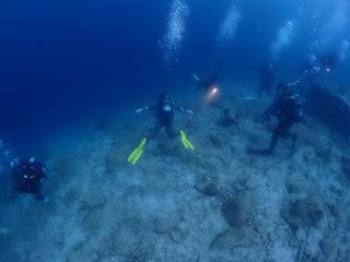 2021年6月12日の柏島ダイビング