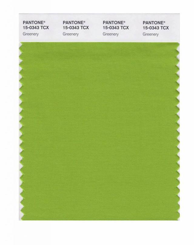 pantone revela a cor de 2017- greenery, a cor de 2017 greenery, greenery, cor de 2017, pantone, cores de 2017, colors 2017, blog camila andrade, blogueira de moda em ribeirão preto, fashion blogger em ribeirão preto, blog camila andrade, o melhor blog de moda, blog de dicas de moda