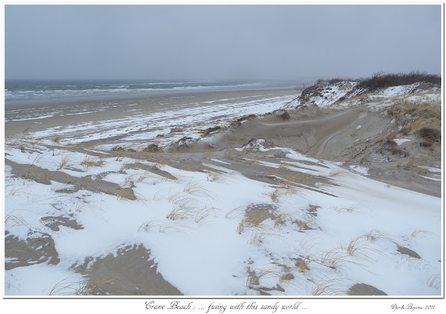 Crane Beach: ... fusing with this sandy world...