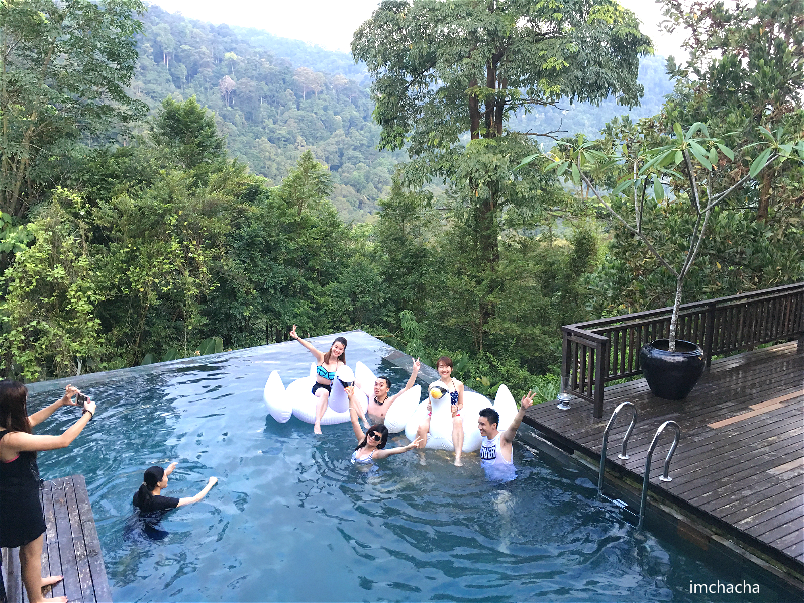 kitchen fryer mat the shorea, seremban : back to nature. forest getaway in ...