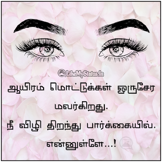 Love quote in tamil