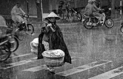 Tôi thấy Mẹ trong mưa