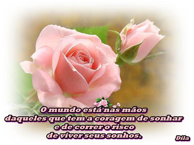 Na Vida Tudo Tem Um Sentido Resposta De Deus Pra Ti: **Na Vida Tudo Tem Um Sentido!**: A Felicidade