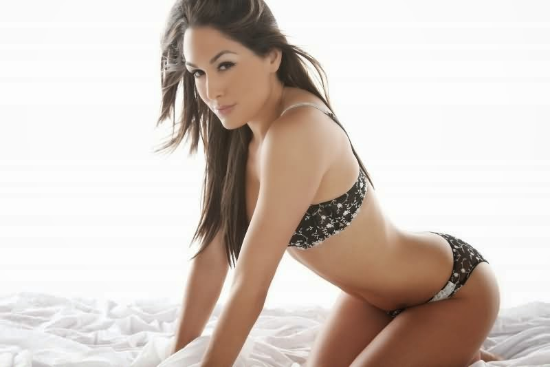 Nikki Bella Hd Wallpapers Wwe Wrestler Hd Wallpapers