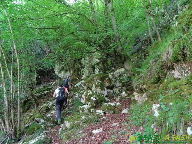 Pasada del Picayo: Saliendo del área recreativa