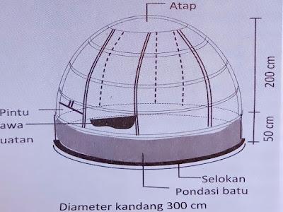 Gambar Kandang Penangkaran Cucak Hijau Model Ren