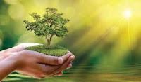 पर्यावरण पर कविता