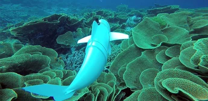 Robot Ikan SoFi