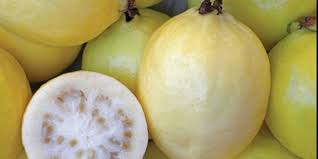 الجوافة جنة الفواكة , فوائد واسرار الجوافة