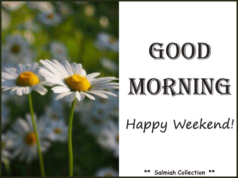 Good morning wish 18 happy weekend salmiah collection happy weekend m4hsunfo