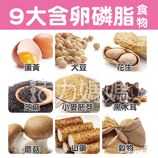 由於卵磷脂具有乳化效果(能結合水和脂肪),使其廣泛用於食品加工,如霜淇淋、嬰兒配方奶粉、麵包、人造奶油巧克力等食物,也作為抗氧化劑和風味保護劑,到目前為止,黃豆(大豆)是製造卵磷脂補充劑最常用的原料,牛奶、油菜籽、向日葵和玉米有時也被使用。