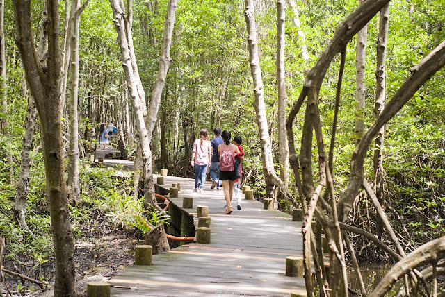 Đi bộ trong Đảo Khỉ