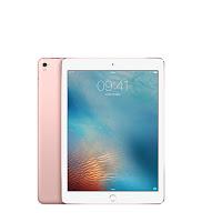 iPad Pro 32GB Rosa Wi Fi