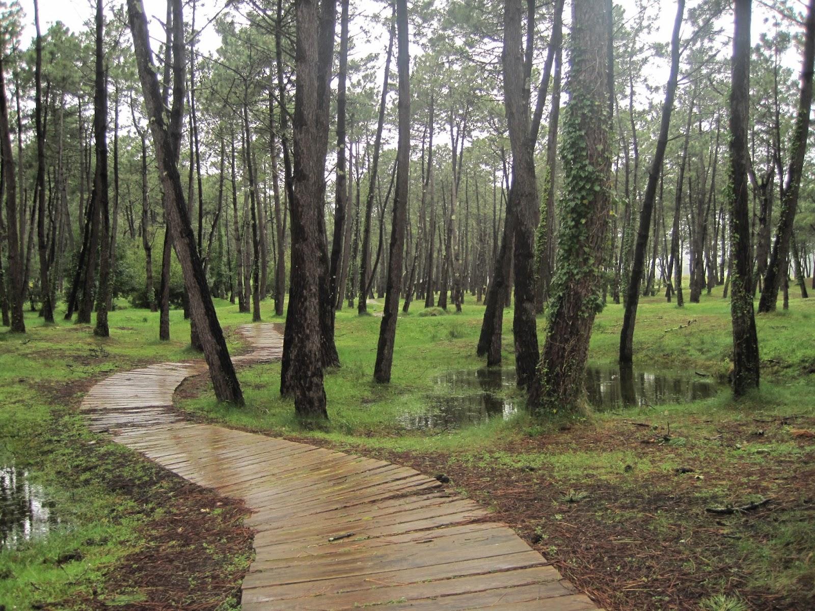 Paseo de Morouzos en Ortigueira