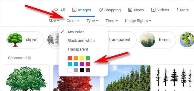 """في بحث الصور من Google ، انقر على قائمة """"اللون"""" ، ثم حدد لونًا."""