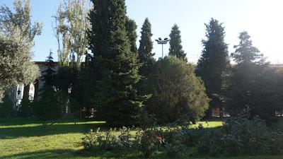 Jardín de Nuevos Ministerios
