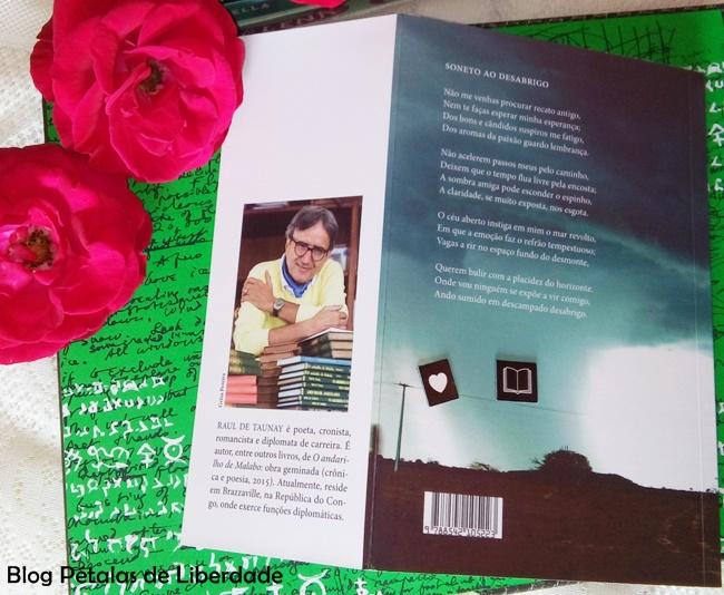Poemas-ao-desabrigo, Raul-de-Taunay, 7letras, resenha, livro, poesias, capa