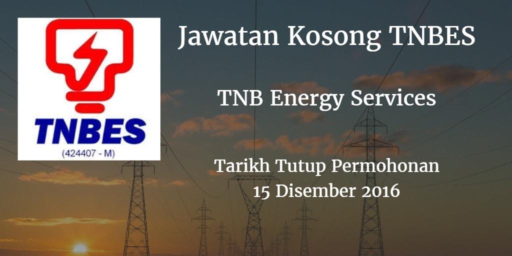 Jawatan Kosong TNBES 12 Disember 2016