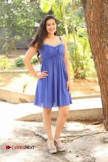 Actress Prasanna Stills in Blue Short Dress at Inkenti Nuvve Cheppu Movie Platinum Disc Function  0186.JPG