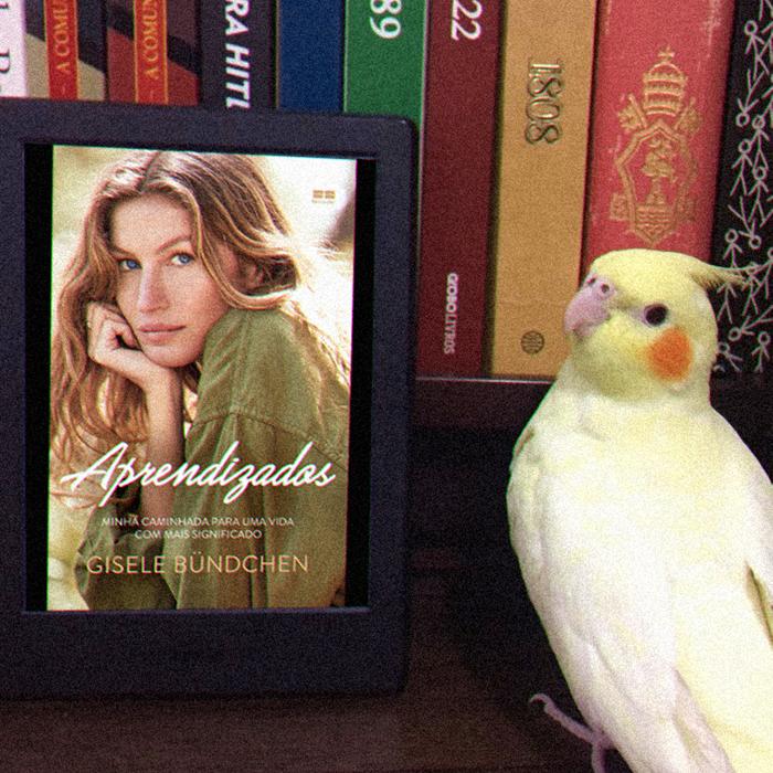 Aprendizados, de Gisele Bündchen - Editora BestSeller