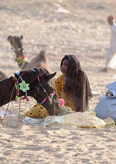 CamelFair
