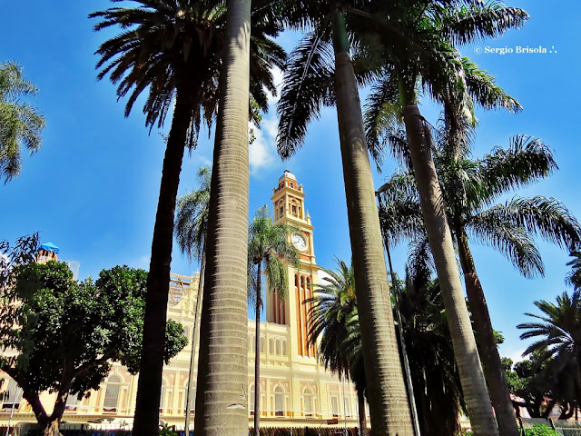 Foto composição com a Estação da Luz e palmeiras do Parque Jardim da Luz