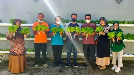 Panen Sayuran Perdana di Gang Hijau Kelurahan KTK Solok