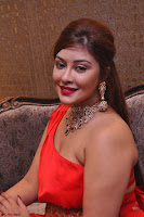 Payal Ghosh Looks Stunning in Red Half Shoulder Gown 003.JPG