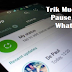 Wajib Tau! Trik Pause Status WhatsApp Tanpa Tahan Layar HP