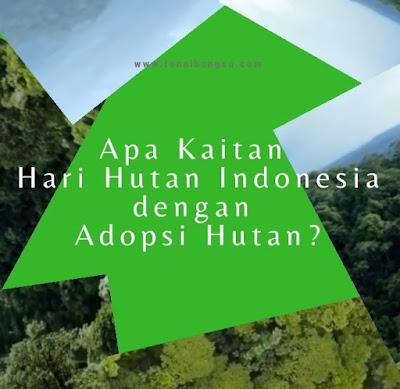 cara menjaga hutan, cara melestarikan hutan dengan baik, apa itu adopsi hutan, bagaimana cara adopsi hutan,