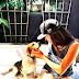 ΑΠΟ ΤΟ ΚΑΤΑΦΥΓΙΟ ΣΤΟ ΠΑΛΑΤΙ! Η ζωή του σκύλου της Μέγκαν Μαρκλ...