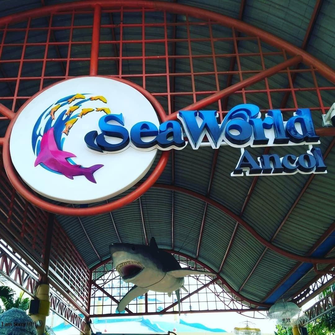 Tiket Masuk dan Lokasi Seaworld Ancol