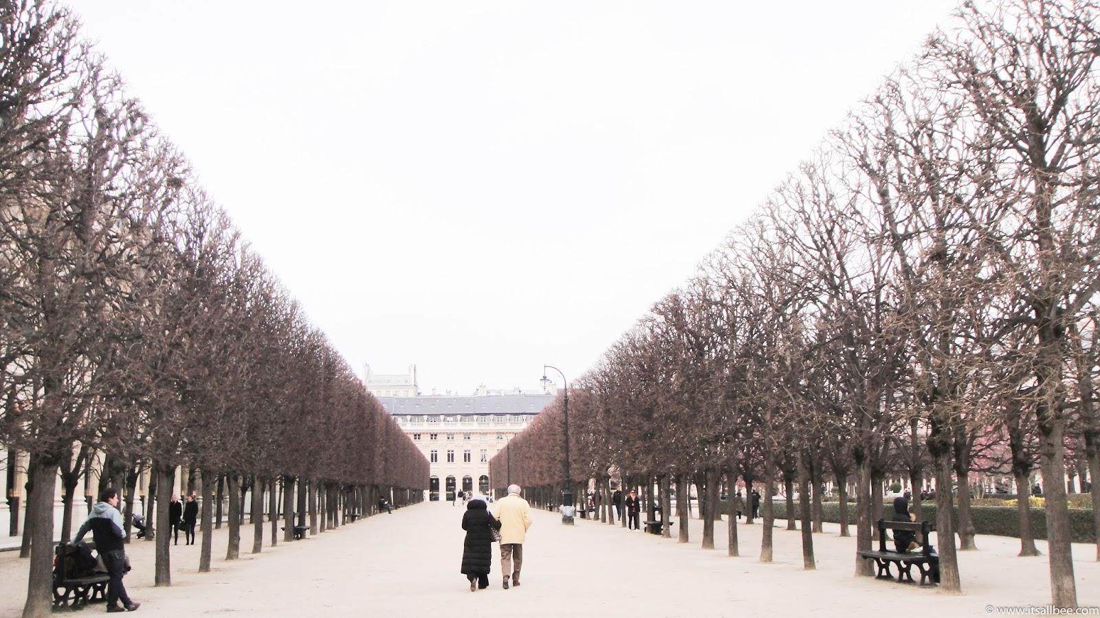 Palais Royal Trees - Palais-Royal Paris - Les Colonnes De Duren - colonnes de buren signification