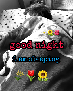 good night wishes  message in nepali