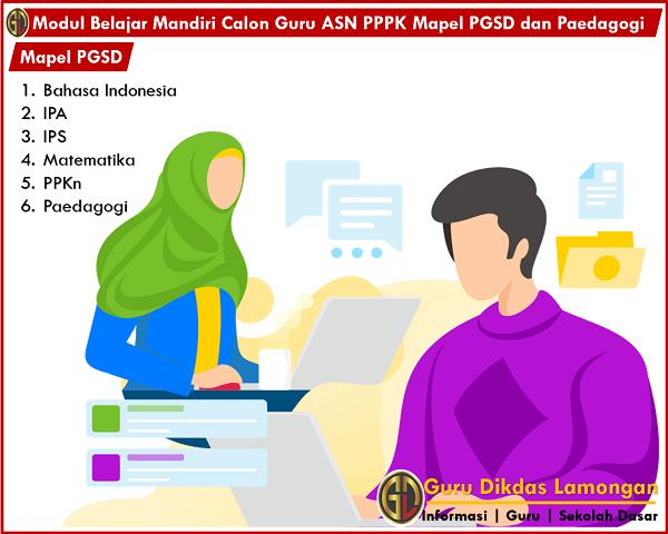 Modul Belajar Mandiri Calon Guru ASN PPPK Mapel PGSD dan Paedagogi