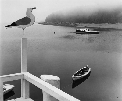 http://taoguide.tumblr.com/post/163163434883/adreciclarte-by-ellen-auerbach-1940