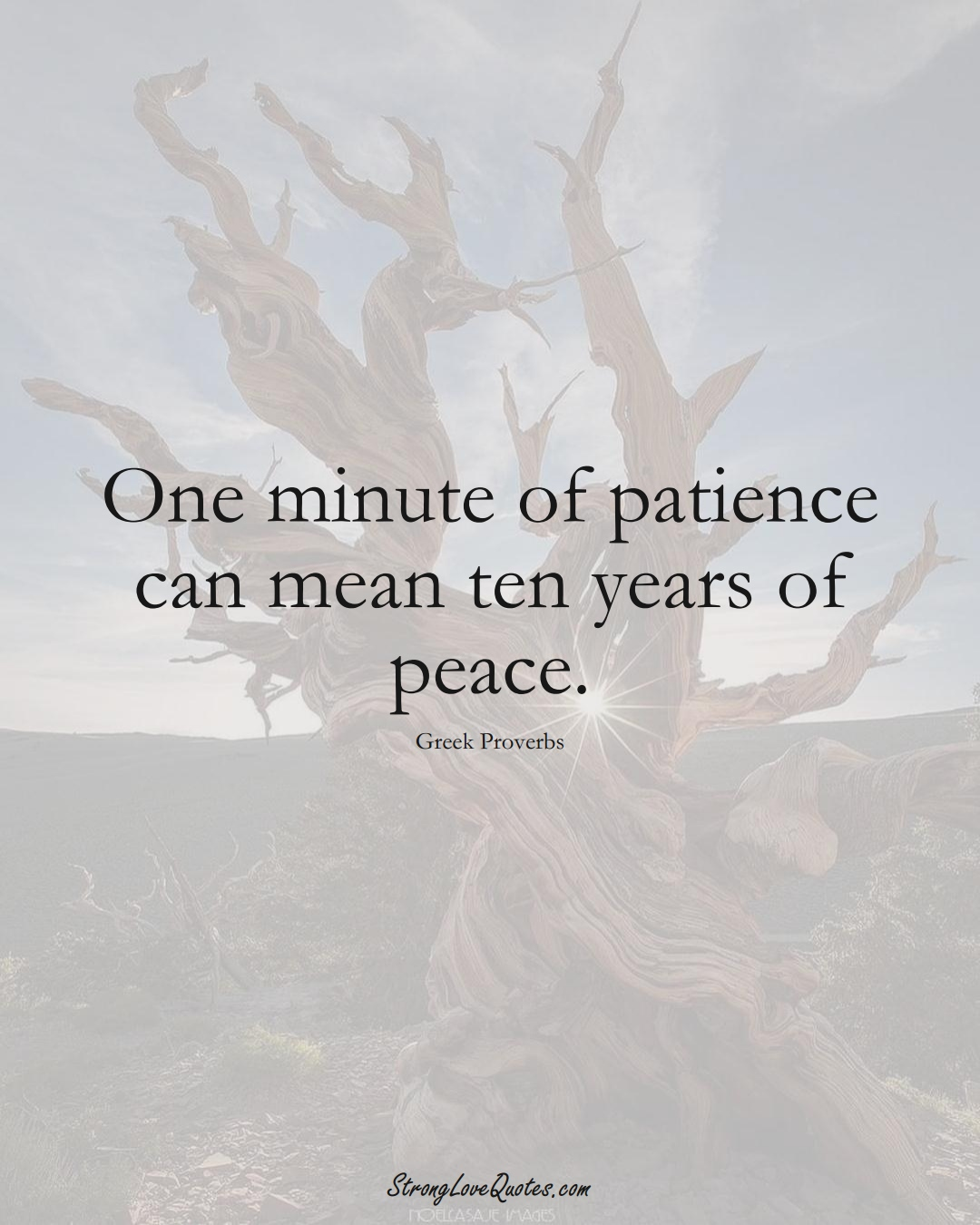 One minute of patience can mean ten years of peace. (Greek Sayings);  #EuropeanSayings
