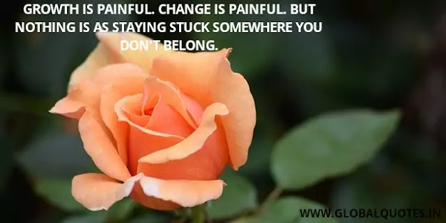Growth is painful. Change is painful. but nothing is as staying stuck somewhere you don't belong