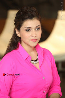 Actress Mannar Chopra in Pink Top and Blue Skirt at Rogue movie Interview  0184.JPG