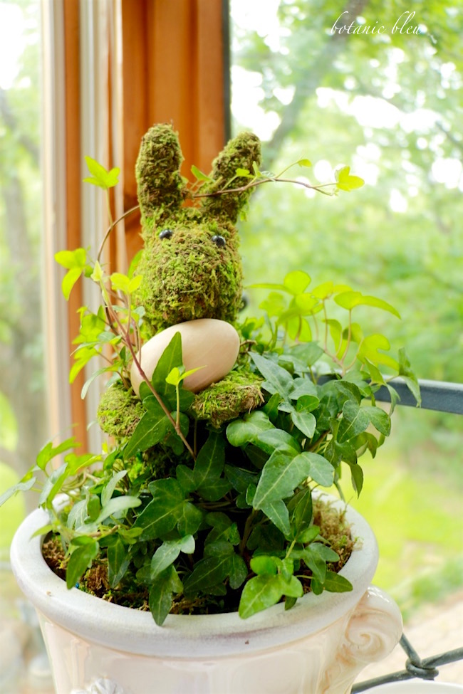 ivy-moss-bunny-brings-a-fresh-look-to-kitchen