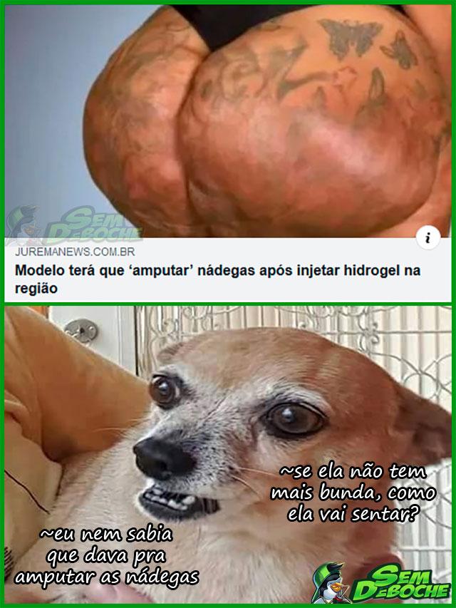 MODELO DESBUNDADA