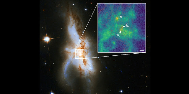 The irregular galaxy NGC 6240. New observations show that it harbours not two but three supermassive black holes at its core. The northern black hole (N) is active and was known before. The zoomed-in new high-spatial resolution image shows that the southern component consists of two supermassive black holes (S1 and S2). The green colour indicates the distribution of gas ionized by radiation surrounding the black holes. The red lines show the contours of the starlight from the galaxy and the length of the white bar corresponds to 1000 light years.   Photo: P Weilbacher (AIP), NASA, ESA, the Hubble Heritage (STScI/AURA)-ESA/Hubble Collaboration, and A Evans (University of Virginia, Charlottesville/NRAO/Stony Brook University)