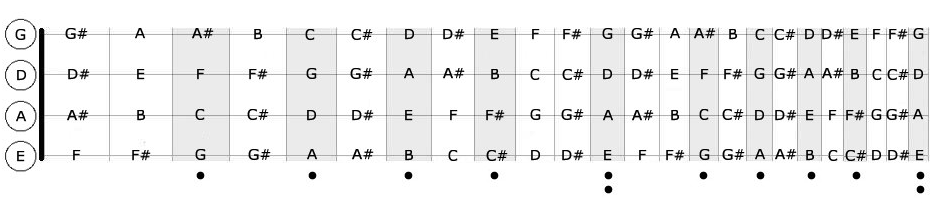 Bass Notes On Fretboard : learn the notes quickly on the bass fretboard js music school ~ Hamham.info Haus und Dekorationen