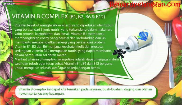 Kandungan Vitamin B kompleks dalam S Lutena