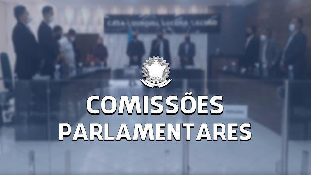 Comissões Parlamentares da Câmara Municipal de Panelas-PE e seus membros