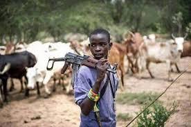 Benue villagers kill three herdsmen, cattle
