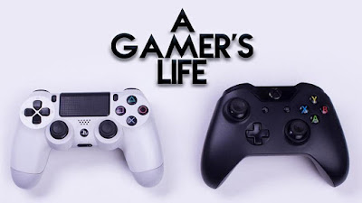 A Gamer's Life (2016)